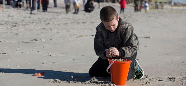 Boy digging sand